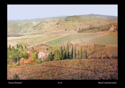 tuscan-vineyard-mural-in-home